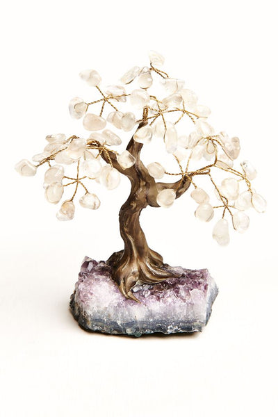 Clear Quartz Crystal Tree - SOLD OUT!