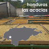 One Line Coffee Honduras Las Acacias