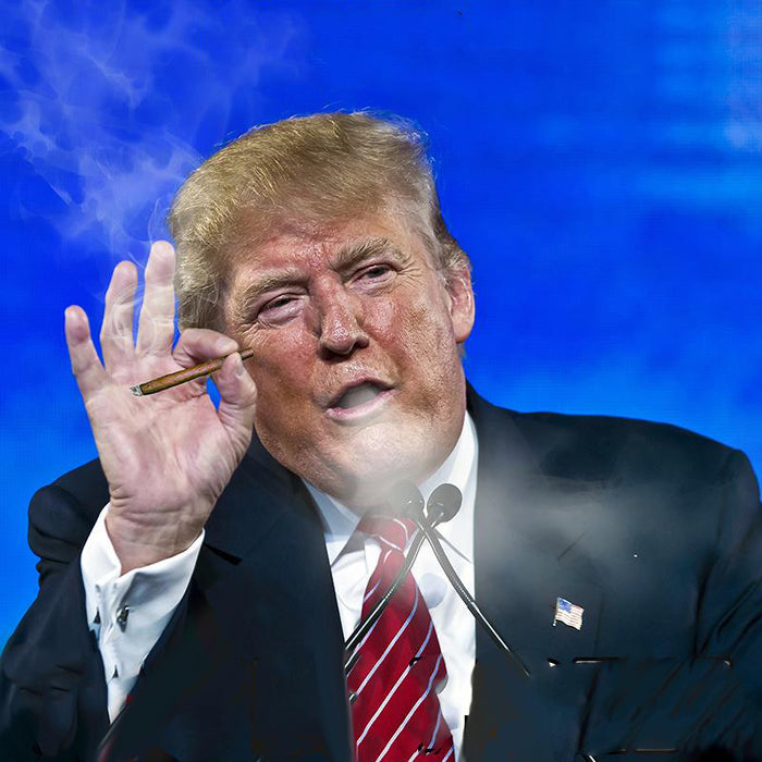 What will the Trump administration do to marijuana legalization?