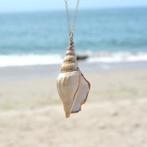 Ocean Winds Conch Shell Pendant Necklace and Chain