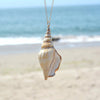 Image of Ocean Winds Conch Shell Pendant Necklace and Chain