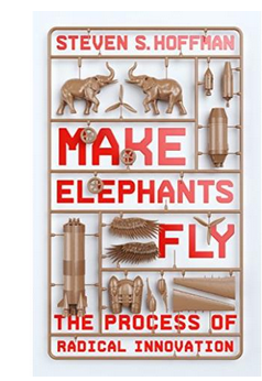 Make Elephants Fly: The Process of Radical Innovation  (PB) By: Steven Hoffman