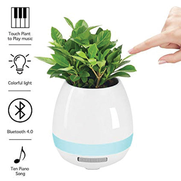 Flowerpot Night Light Smart Touch Music Plant Lamp Rechargeable Wireless Play Piano on a Real Plant Musical Boxes without Plant | 24HOURS.PK