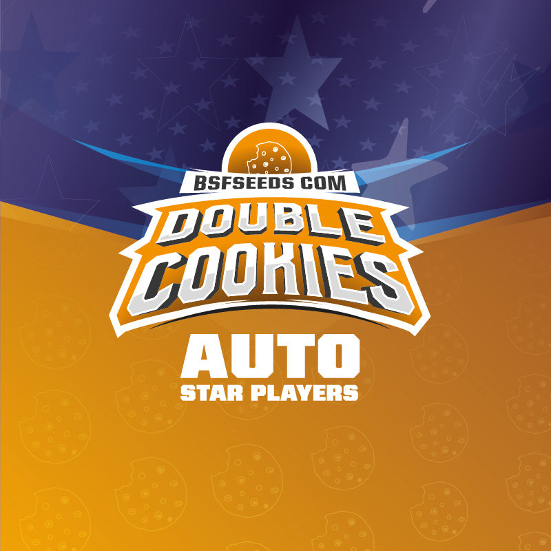 Star Player Double Cookies Auto X12 - BSF Seeds | Z1