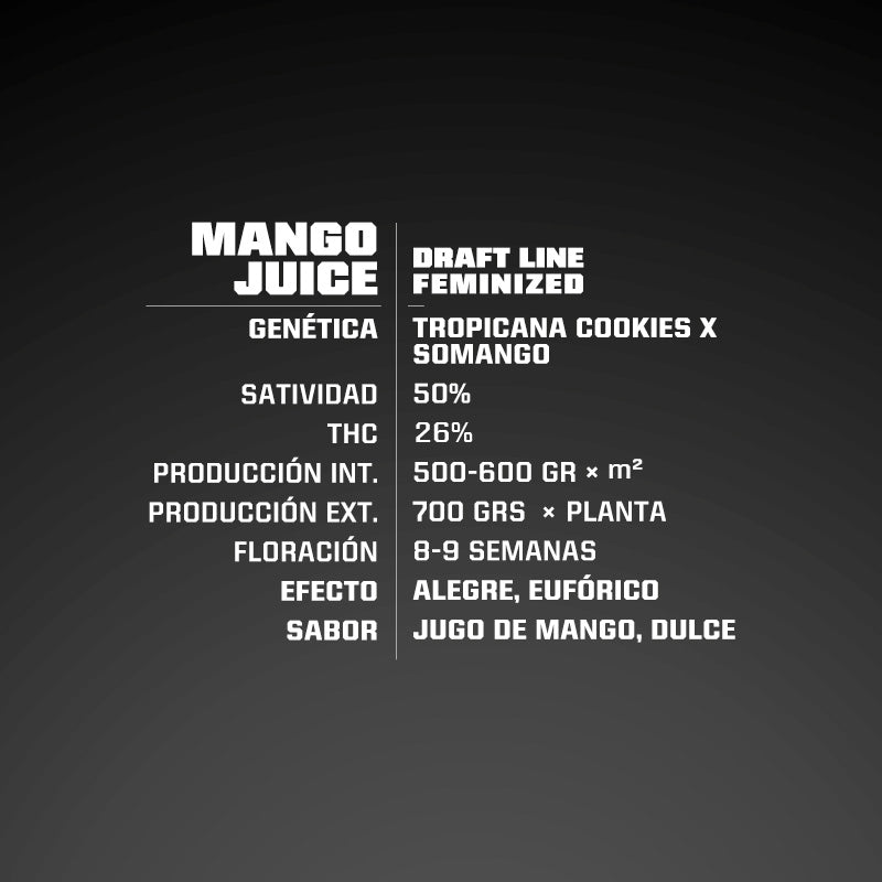 Mango Juice X2 - BSF Seeds | Z1