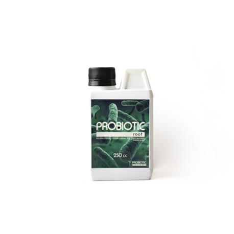 Probiotic Root 250cc | Z1