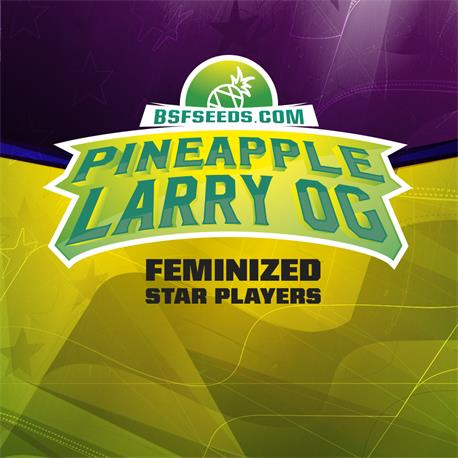 STAR PLAYER Pineapple Larry OG X2 - BSF SEEDS | Z1