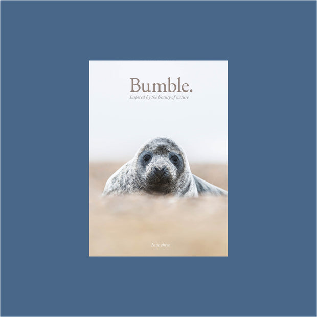 bumble magazine - issue three