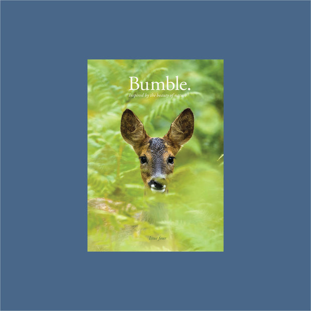 bumble magazine - issue four