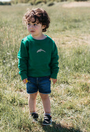 dolphin childrens sweatshirt