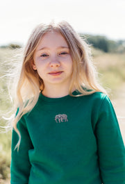elephant childrens sweatshirt