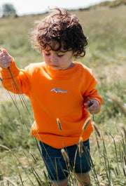 hammerhead shark childrens sweatshirt