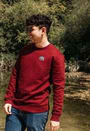 elephant mens sweatshirt