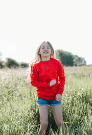 zebra childrens sweatshirt
