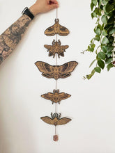 Load image into Gallery viewer, Moth and Beetle Garland