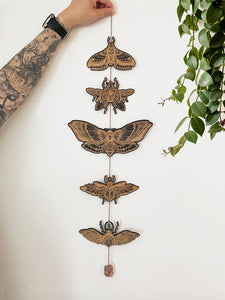 Moth and Beetle Garland