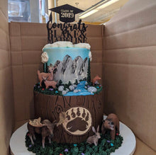 Load image into Gallery viewer, Custom Graduation Cake Topper