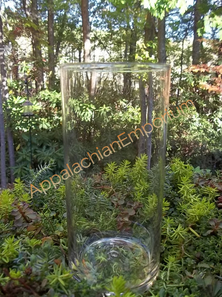 Tall Round Glass Container Vase for Terrariums, Mini Gardens, Succulents or Candles