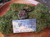 live moss and lichen