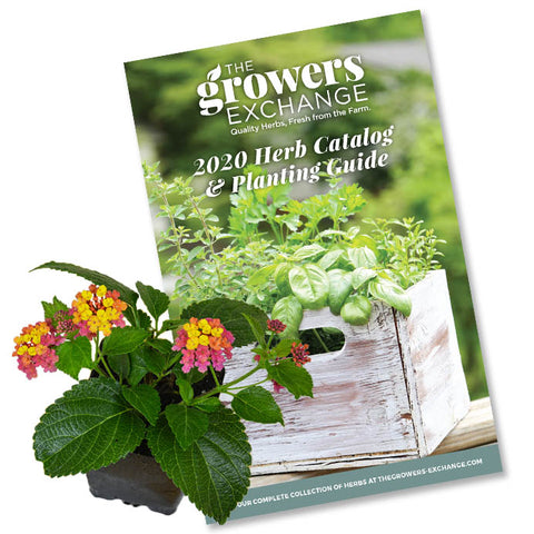 Free Herb Catalog Download