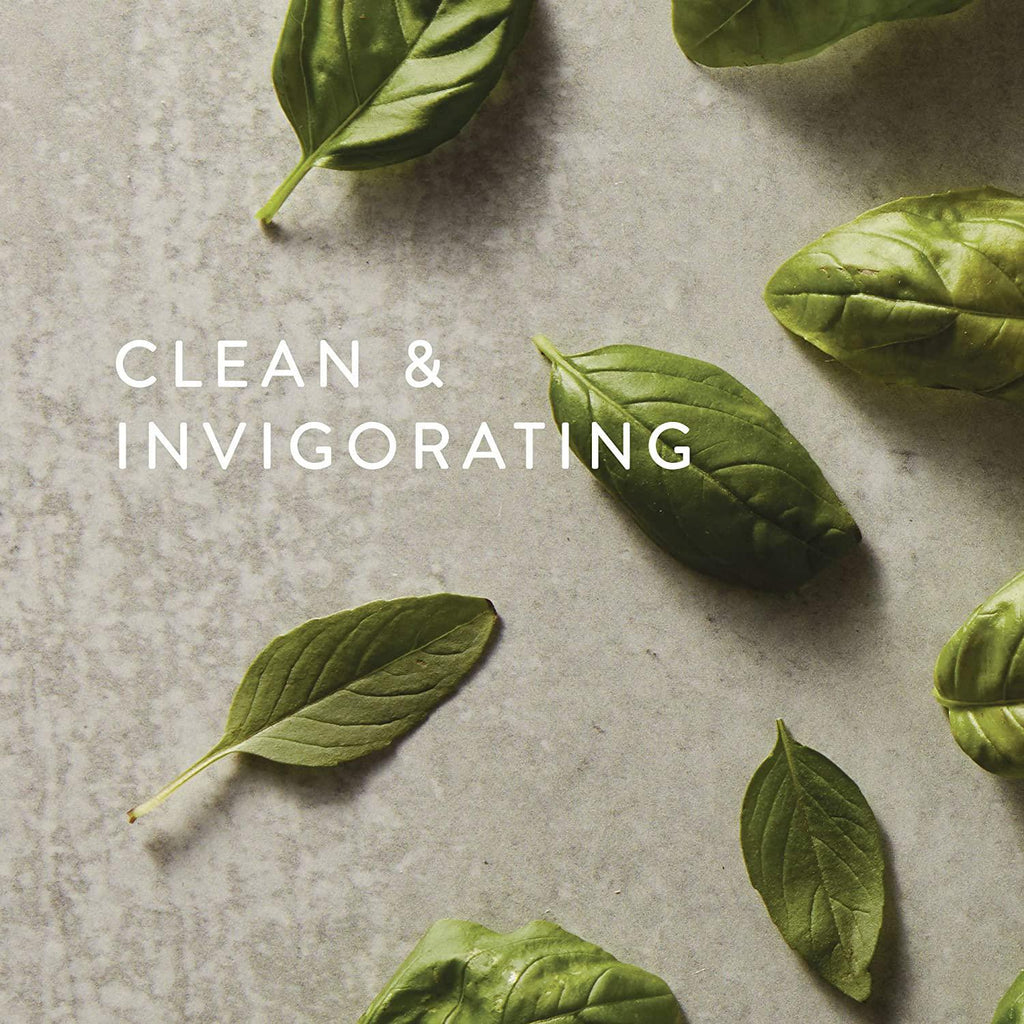 Fresh-cut Basil Countertop Spray