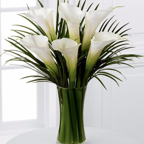 Simple and sophisticated, these exquisite full-sized white calla lilies are accented by lush palm leaves and hand tied by our professional designers to create a wonderful, heartfelt gesture. Toronto Online Flower Delivery Service for Luxury Roses providing free delivery in the greater Toronto area for Birthdays, Anniversary, New baby, Weddings, Mother's Day and Valentines day