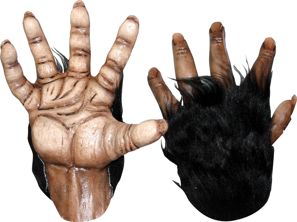 Chimp Brown Hands