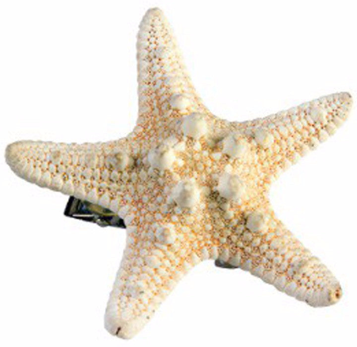 Mermaid Star Fish Hairclip