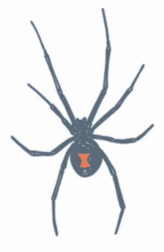 Prison Black Widow