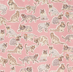 #Pink Cats