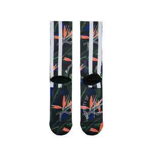 Stance Trackies Floral Socks