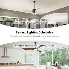 Load image into Gallery viewer, Treatlife Smart Ceiling Fan Control and Light Dimmer Switch,Works with Alexa Google Assistant