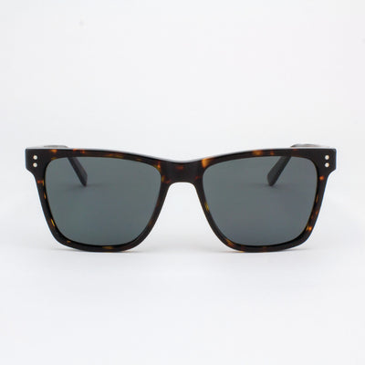 hawthorne Island Skye dark tortoise shell acetate and wood sunglasses