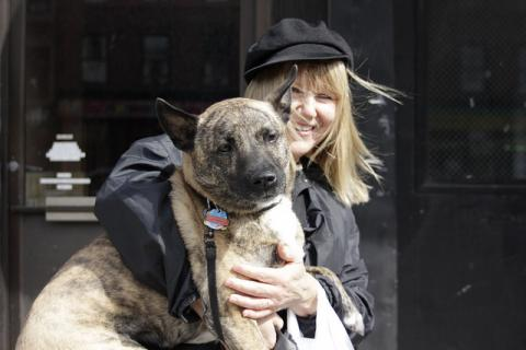 DoggieLawn Explores: Just how loyal are our pooches?