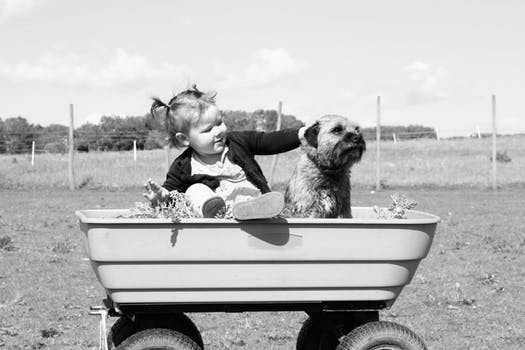 Dog and a child in a tub