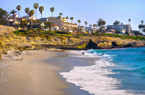 Beach in San Diego, La Jolla. Your dog will love it!