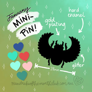 January Mini-Pin