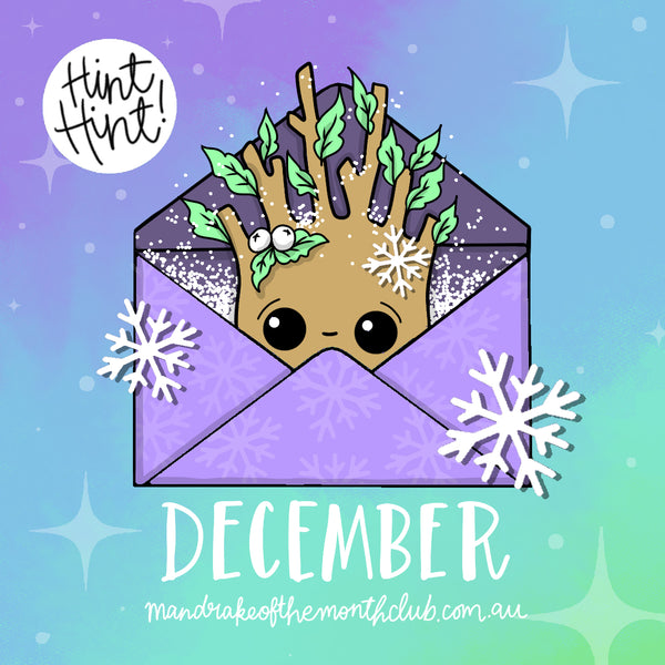 December Mandrake of the Month Club