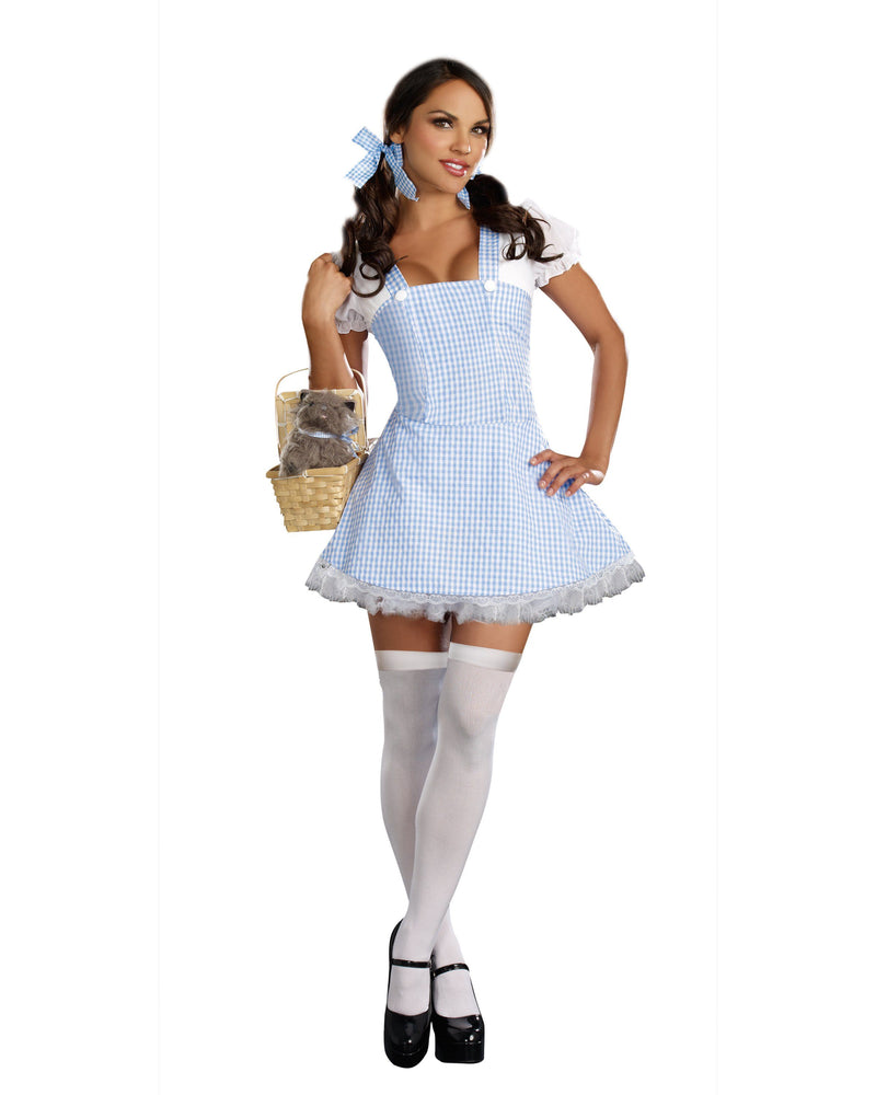Blue Gingham Dress Costume Accessory Dreamgirl Costume