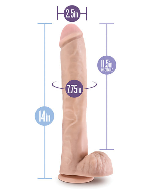 "Blush Au Naturel Daddy 14"" Sensa Feel Dual Density Dong W/suction Cup - Chocolate"