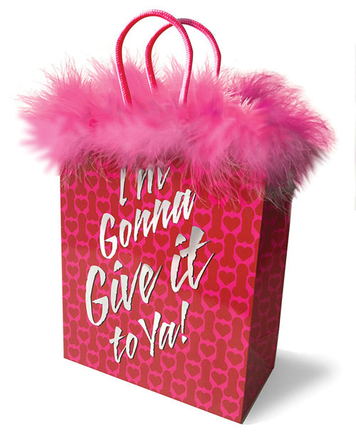 I'm Gonna Give It To Ya! Gift Bag - Casual Toys