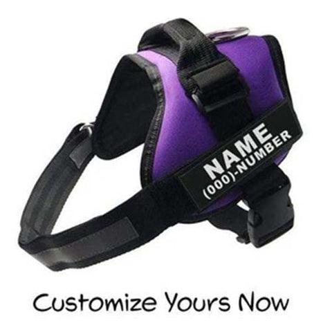 Customize All In One No Pull Dog Harness