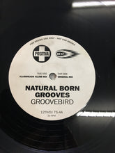 "Load image into Gallery viewer, NATURAL BORN GROOVES 12"" ; GROOVEBIRD"