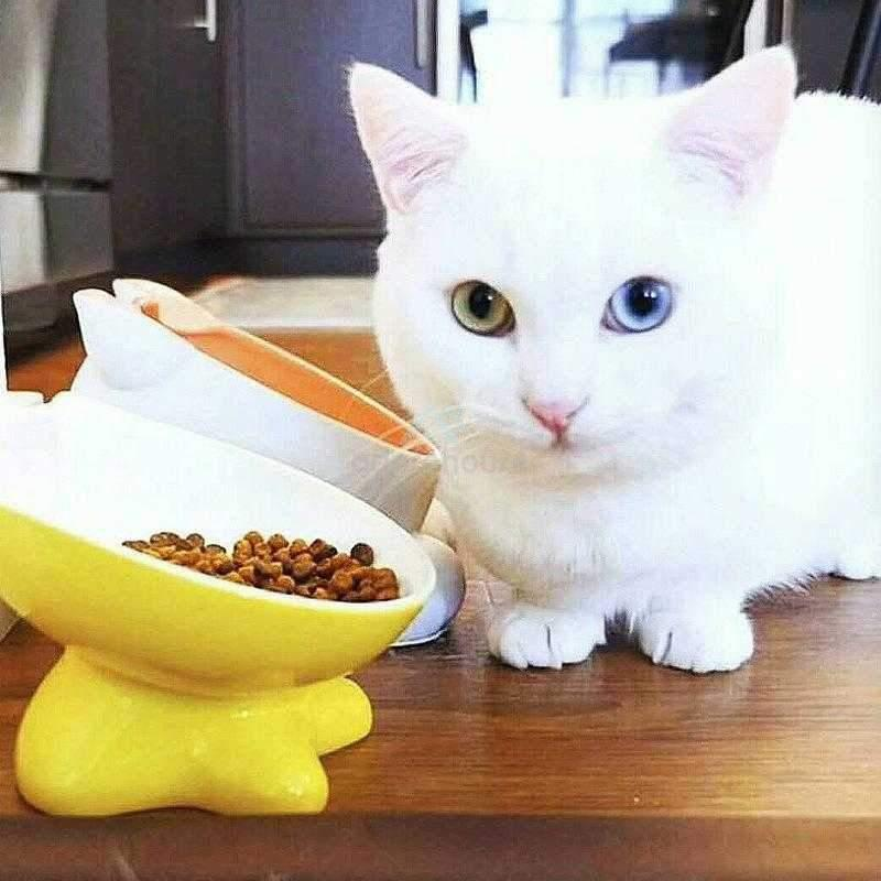 Cute Pure White Ceramics Cat Food and Water Bowl-Cats-Adorehouse.com
