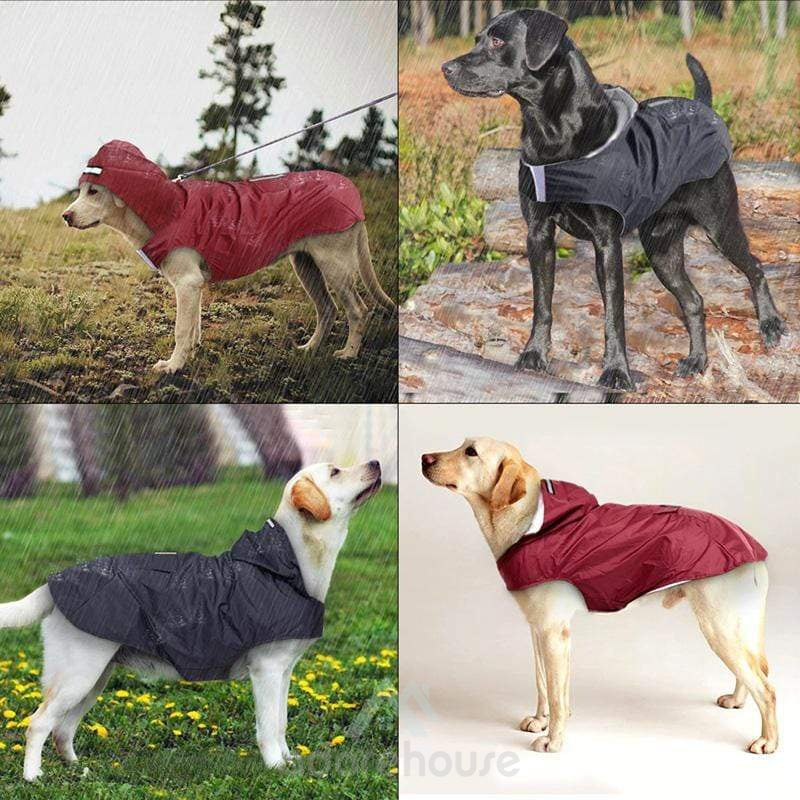 Waterproof Dog Rain Jacket with Reflective Stripes-Dogs-Adorehouse.com