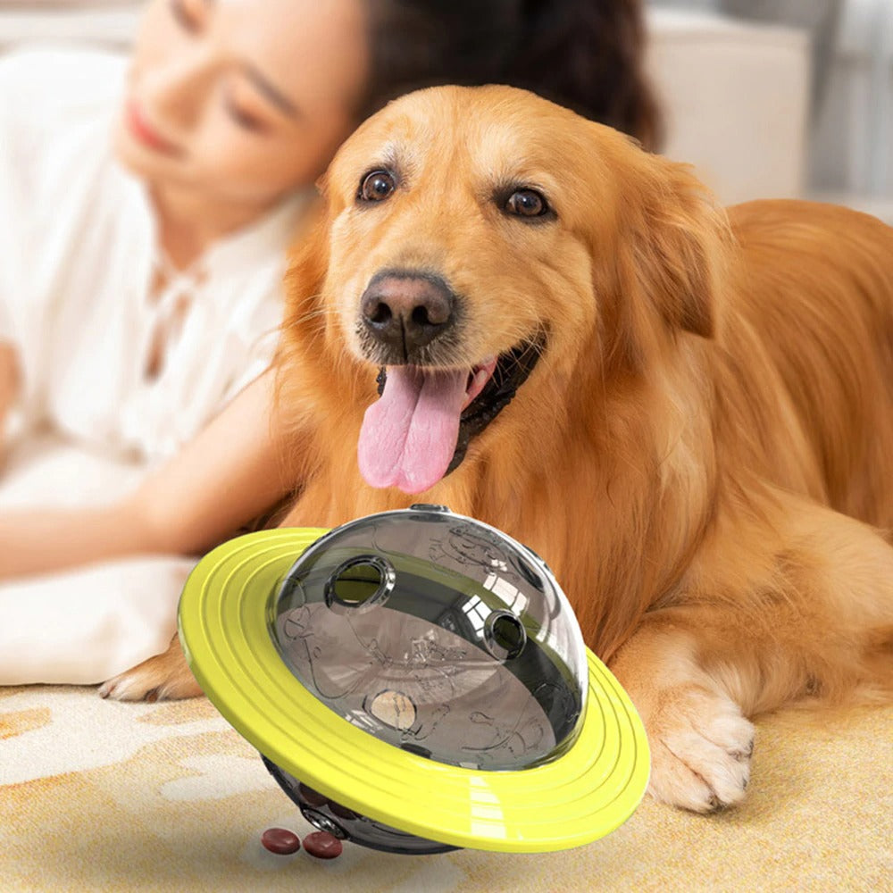 Pet Supplies Universal Dog Flying Discs Toys Leaking Food Feeder