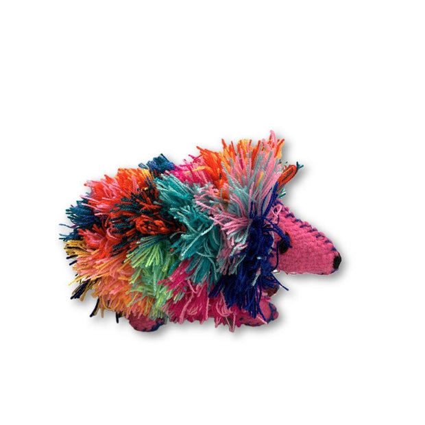 Hedgehog Wool Animal - Mexico