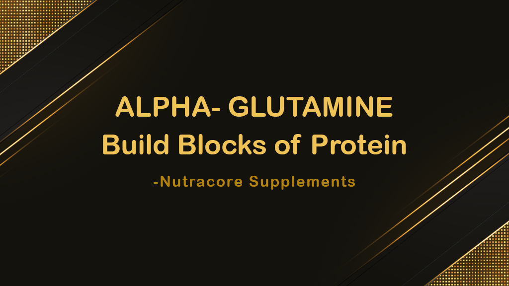 ALPHA- GLUTAMINE: Build Blocks of Protein