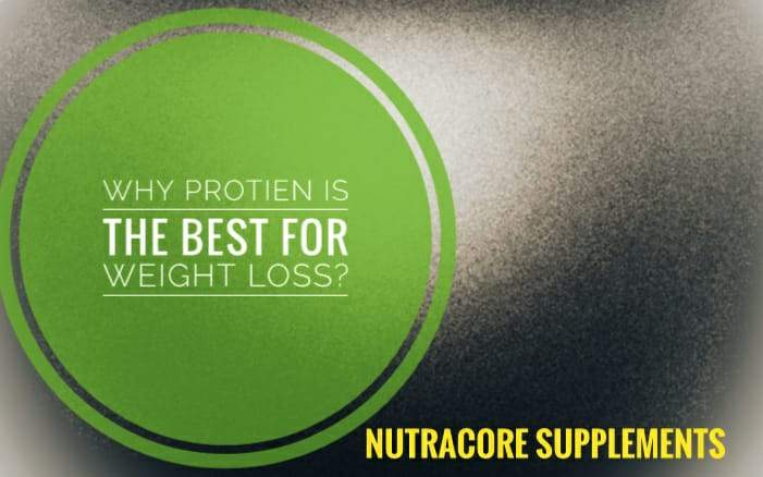 Why Protein is the best for Weight Loss?
