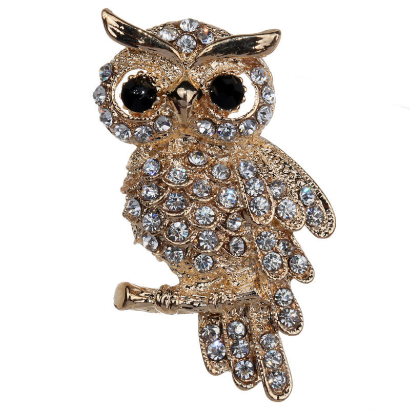 The Wise Old Owl Brooch - A lovely owl-themed brooch.